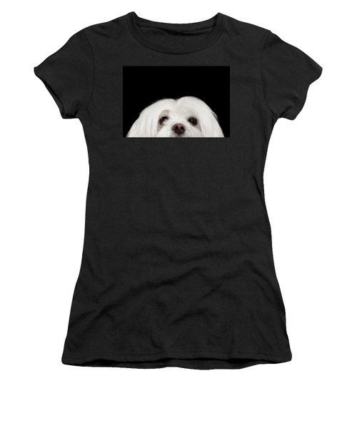 Closeup Nosey White Maltese Dog Looking In Camera Isolated On Black Background Women's T-Shirt