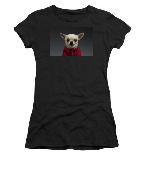 Closeup Portrait Chihuahua Dog In Stylish Clothes. Gray Background Women's T-Shirt