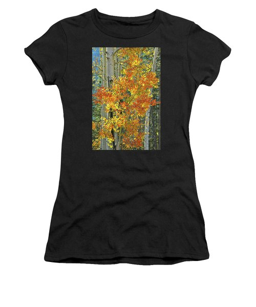 Colorful Aspen Along Million Dollar Highway Women's T-Shirt (Athletic Fit)