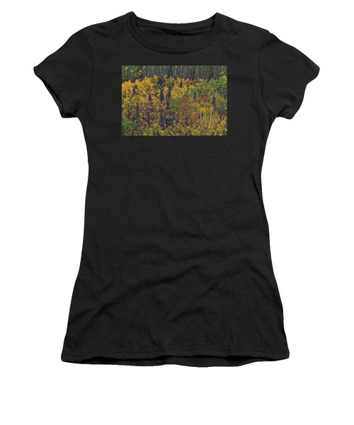 Colors Of Denali Women's T-Shirt (Athletic Fit)