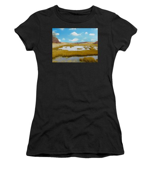 Connecticut Salt Water Marsh Women's T-Shirt (Athletic Fit)