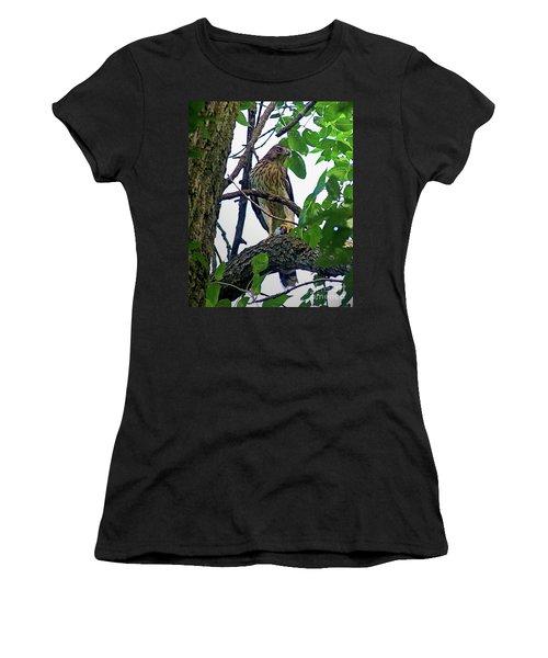 Cooper Hawk Women's T-Shirt (Junior Cut) by Sue Stefanowicz