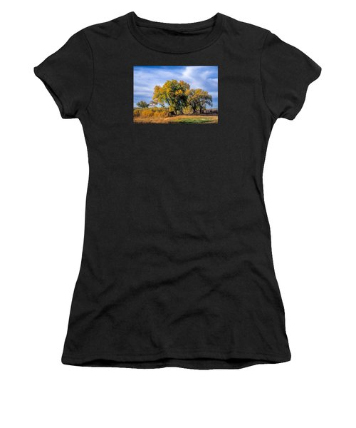 Cottonwood #1 Tree On Ranch Land In Colorado Fall Colors Women's T-Shirt (Junior Cut) by John Brink
