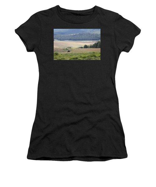 Cow Camp View Women's T-Shirt