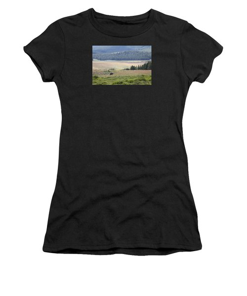 Cow Camp View Women's T-Shirt
