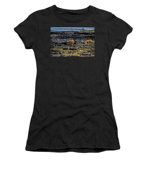 Cows On The Rocks Women's T-Shirt