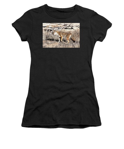 Coyote Women's T-Shirt (Athletic Fit)