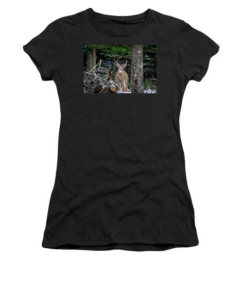 Curious Buck Women's T-Shirt