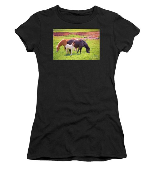 Curious Colt And Mares Women's T-Shirt