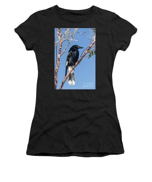 Currawong Women's T-Shirt