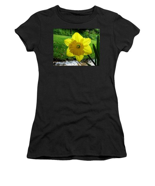 Daffodile In The Rain Women's T-Shirt