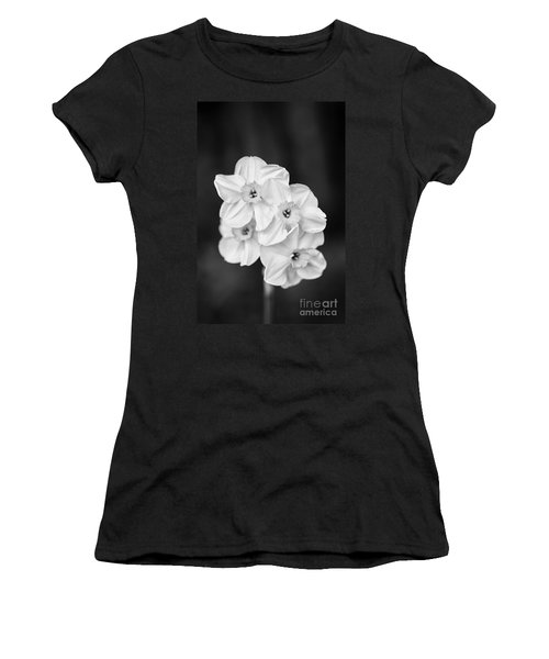Daffodils With A Black Background Women's T-Shirt