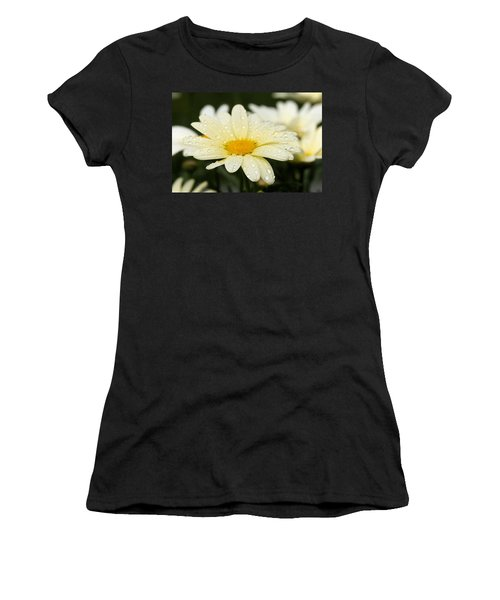 Daisy After Shower Women's T-Shirt (Junior Cut) by Angela Rath
