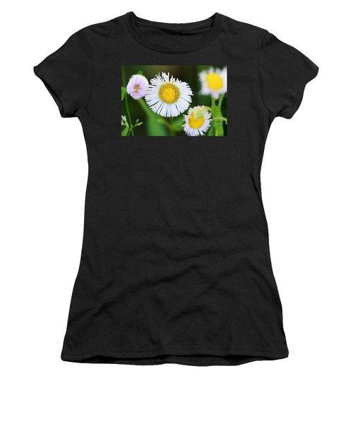 Daisy Fleabane Women's T-Shirt