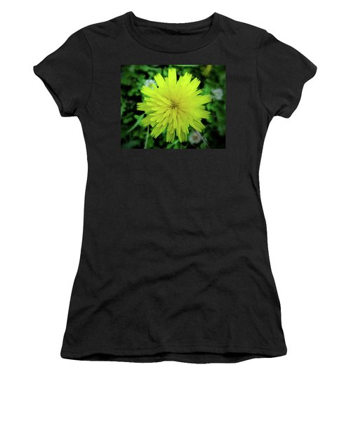 Dandelion Symmetry Women's T-Shirt