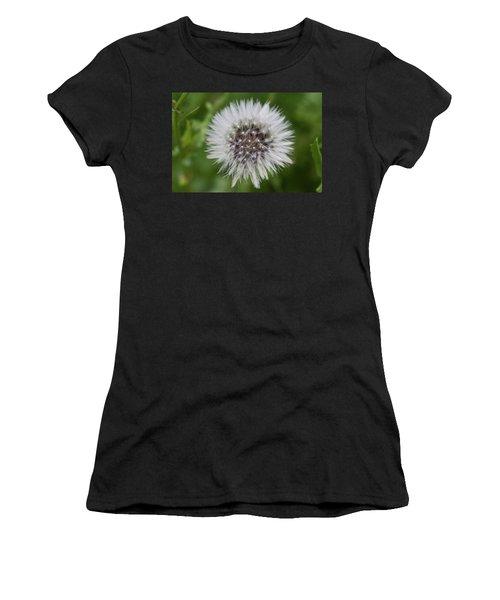 Dandelions Women's T-Shirt