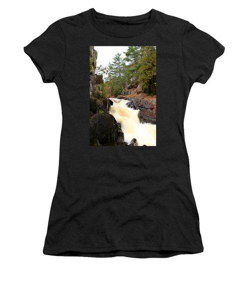 Dave's Falls #7277 Women's T-Shirt (Junior Cut) by Mark J Seefeldt