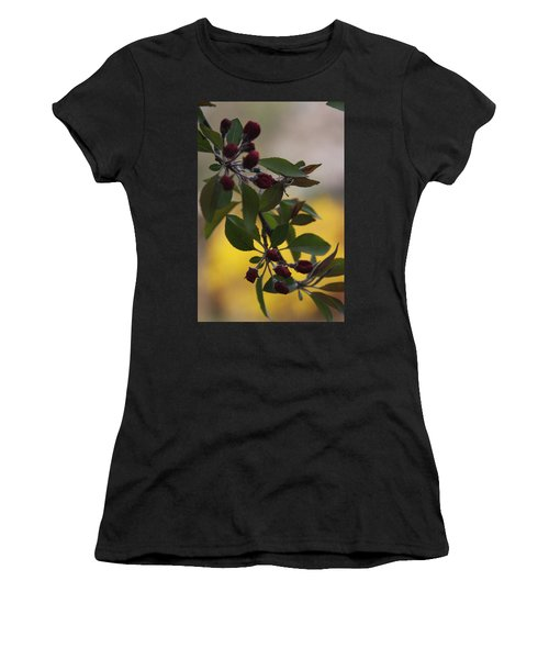 Delicate Crabapple Blossoms Women's T-Shirt (Athletic Fit)