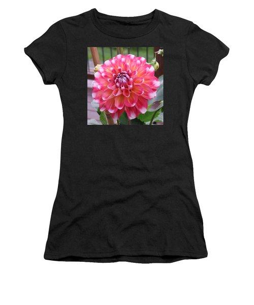 Denali Dahlia Women's T-Shirt (Athletic Fit)