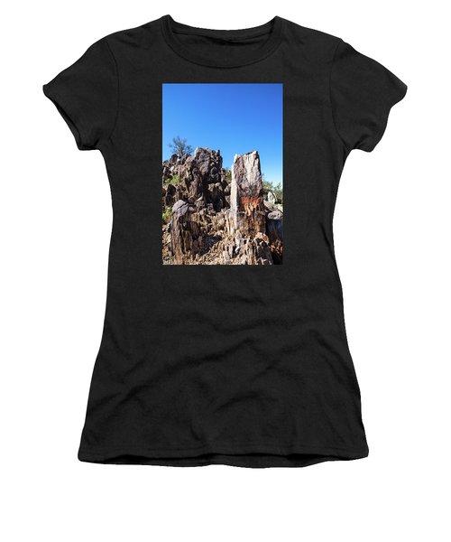 Desert Rocks Women's T-Shirt (Junior Cut) by Ed Cilley