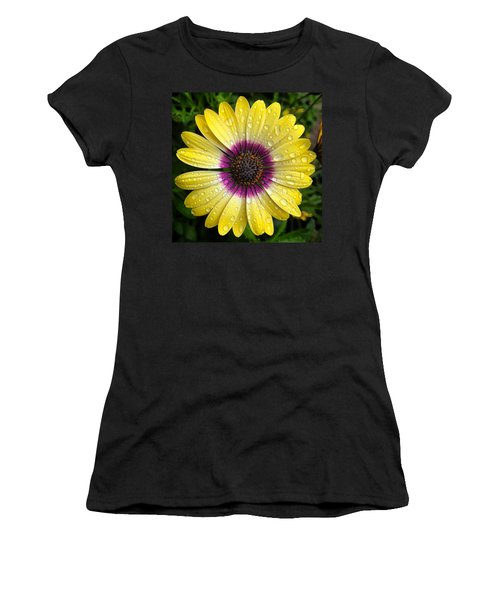 Dew Dropped Daisy Women's T-Shirt