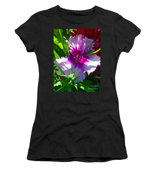 Dianthus Carnation Women's T-Shirt