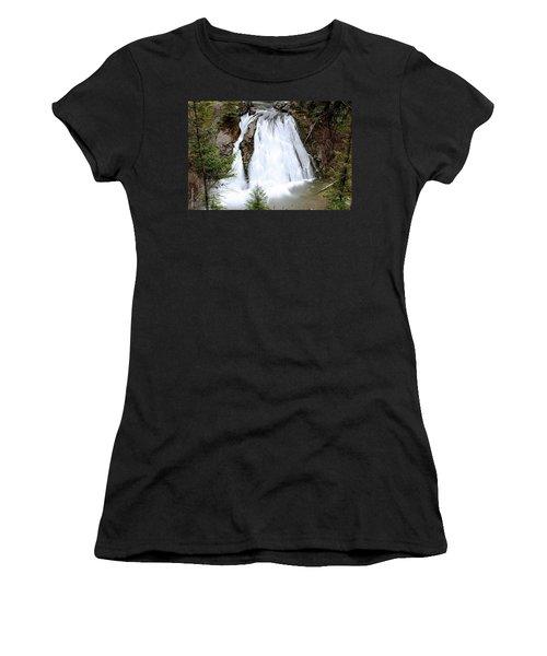 Douglas Falls  Women's T-Shirt