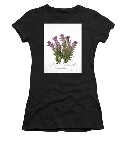 Downy Paintbrush Women's T-Shirt (Athletic Fit)