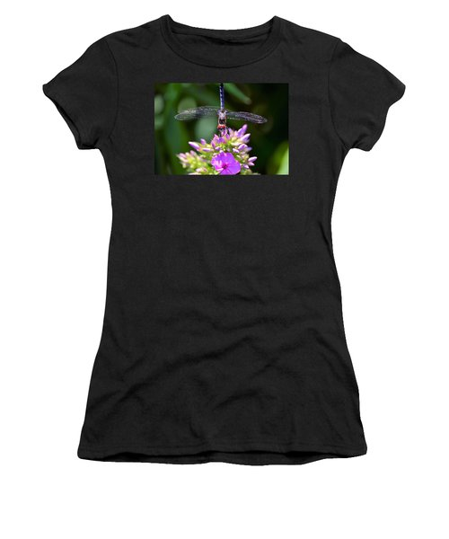 Dragonfly And Phlox Women's T-Shirt (Athletic Fit)
