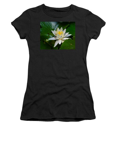 Dragonfly On Waterlily  Women's T-Shirt (Athletic Fit)