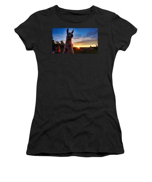 Drama Llamas Women's T-Shirt