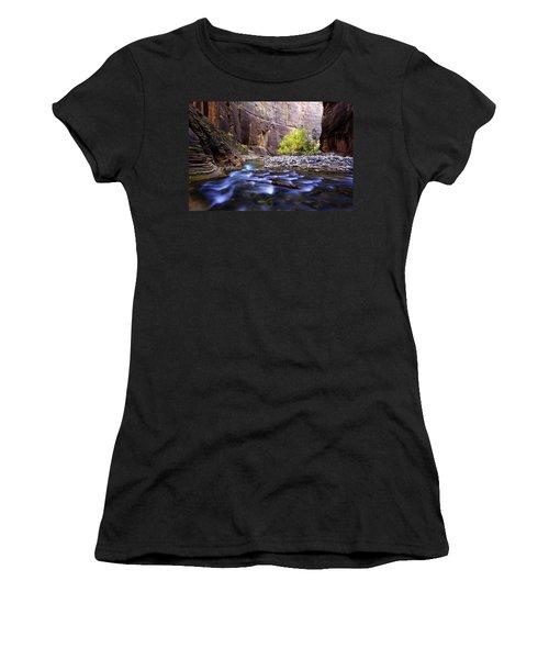 Dynamic Zion Women's T-Shirt