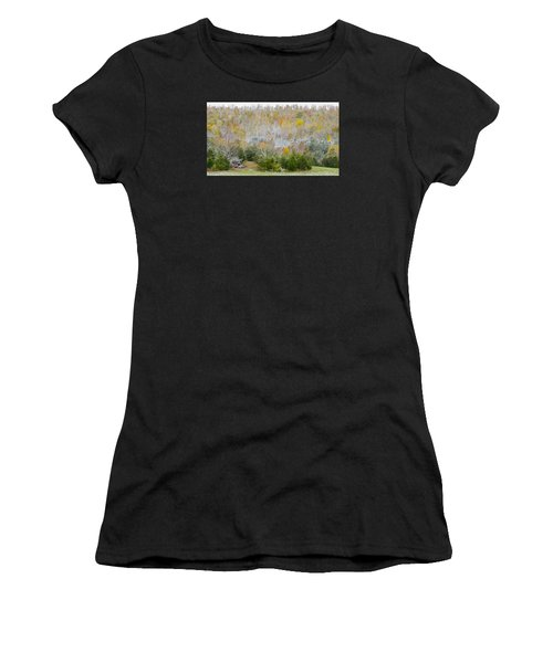 Early Snow Fall Women's T-Shirt (Athletic Fit)