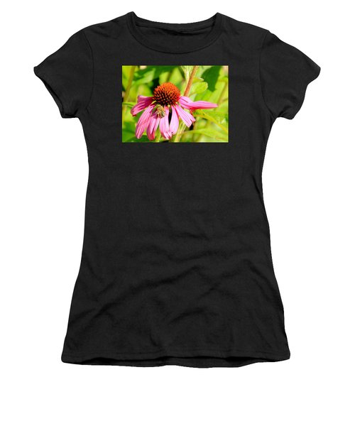 Echinacea Bee Women's T-Shirt
