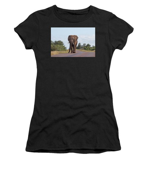 Elephant In Kruger Women's T-Shirt (Athletic Fit)