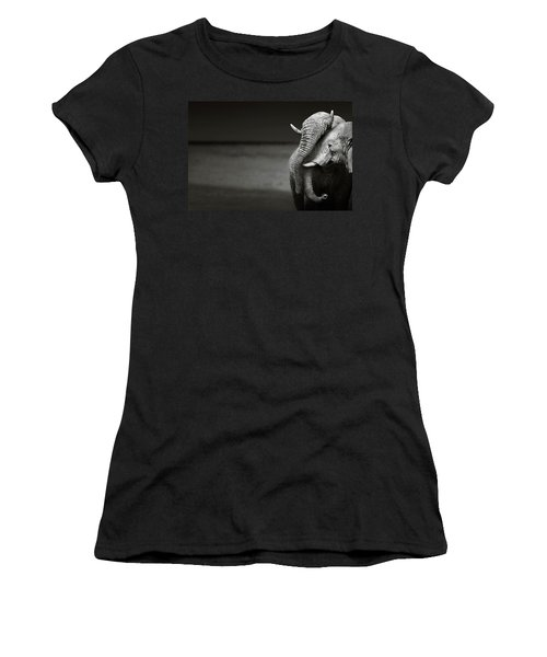 Elephants Interacting Women's T-Shirt