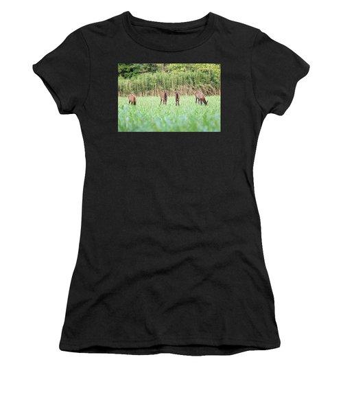 Elk Calves Women's T-Shirt