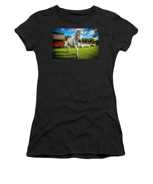 English Gypsy Horse Women's T-Shirt