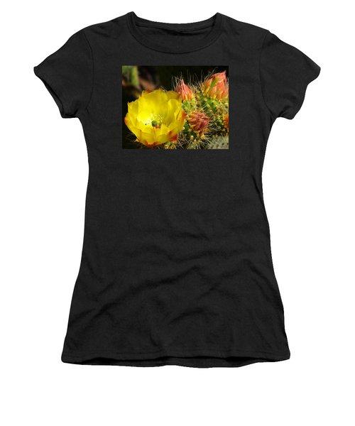 Silks Among Needles Women's T-Shirt
