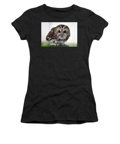 Eurasian Tawny Owl Women's T-Shirt