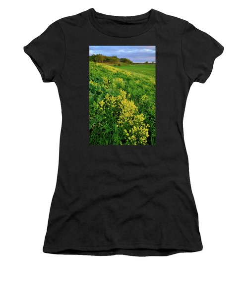 Evening In Glacial Park Mchenry County Illinois  Women's T-Shirt (Athletic Fit)