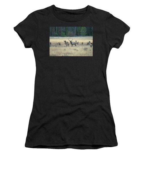 Faabullelk110 Women's T-Shirt