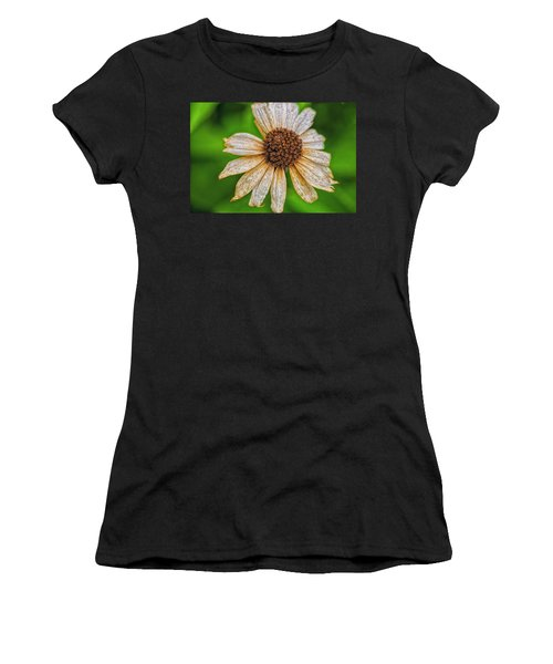 Faded Cone Flower Women's T-Shirt
