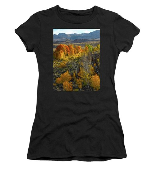 Fall Colors At Aspen Canyon Women's T-Shirt