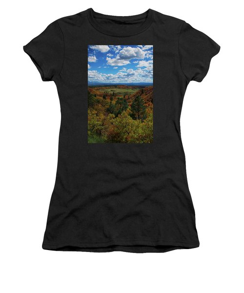 Fall On Four Mile Road Women's T-Shirt