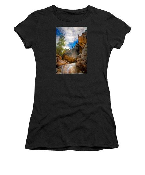Fast-flowing Crazy Woman Women's T-Shirt