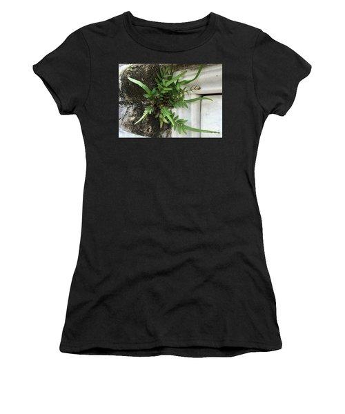 Fern Women's T-Shirt (Junior Cut) by Kim Nelson