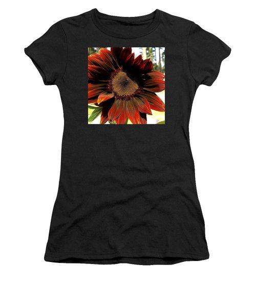 Fibonacci Hues Women's T-Shirt