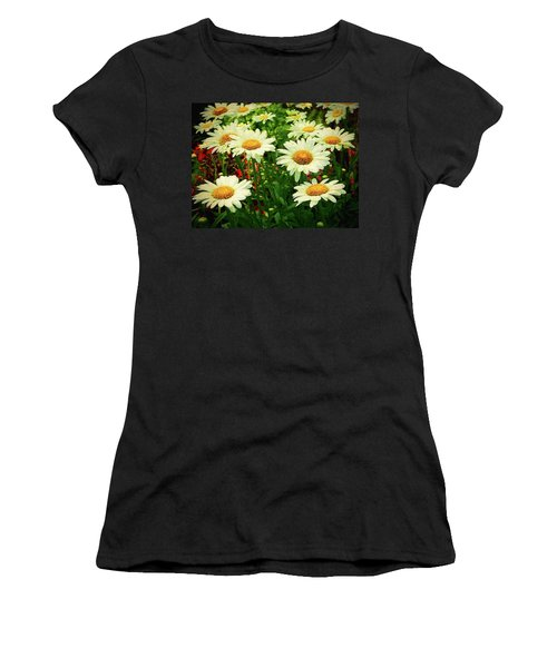 Field Of Daisies  Women's T-Shirt