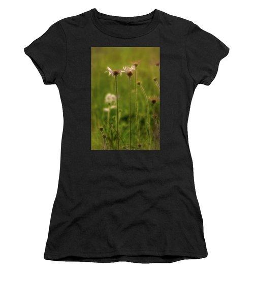 Field Of Flowers 3 Women's T-Shirt